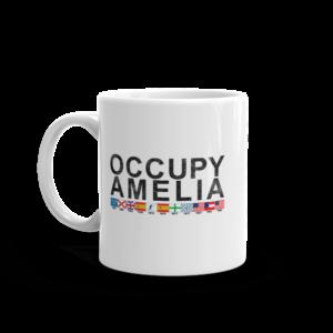 Occupy Amelia Mug Handle-on-Left 11oz
