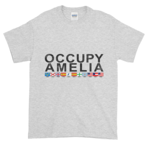 Occupy Amelia Ultra Cotton T-Shirt Ash