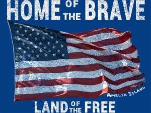 Home of the Brave Land of the Free Graphic
